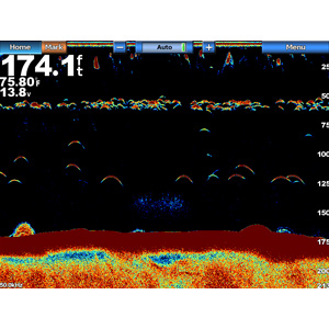 GSD™ 24 Advanced Sonar Module